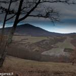 inverno natura 2011 Oasi Ghirardi-(12)