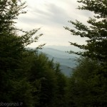 Comunalia Tombeto (42) panorama
