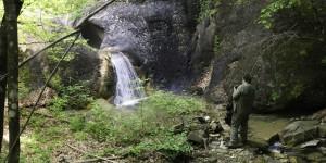 Panoramiche  Val Taro Marmitta dei Giganti (3)