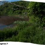 Lago di Gorro – Borgotaro (Parma) (312) cartolina