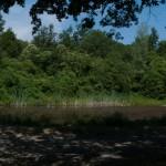 Lago di Gorro – Borgotaro (Parma) (360) panoramica