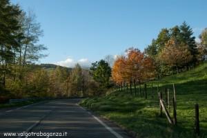2012-11-05 Borgotaro (Parma) autunno in Val Taro (25)