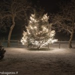 2012-12-13 Albareto Val Gotra ...neve luci...Natale (22)