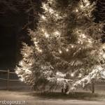 2012-12-13 Albareto Val Gotra ...neve luci...Natale (23)