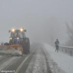 2013-01-13 spartineve in azione con ... corridore della Dolorosa _