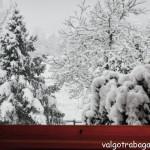 2014-01-30 2° Giorno della Merla Albareto (Parma)
