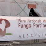 Fiera del Fungo Albareto 07-09-2012 (100)