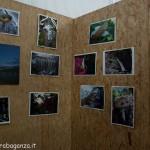 Fiera del Fungo Albareto 08-09-2012 (236)
