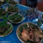 Fiera del Fungo Albareto 08-09-2012 (292) mostra micologica