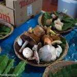 Fiera del Fungo Albareto 08-09-2012 (293) mostra micologica