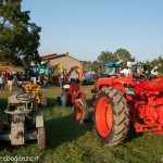 Fiera del Fungo Albareto 08-09-2012 (319) mostra trattori auto d'epoca