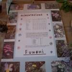 Fiera del Fungo Albareto 09-09-2012 (321) mostra micologica