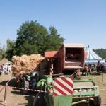 Fiera del Fungo Albareto 09-09-2012 (348) preparazione trebbiatura