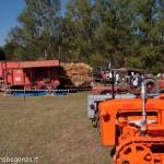 Fiera del Fungo Albareto 09-09-2012 (350) preparazione trebbiatura