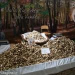Fiera del Fungo Albareto 09-09-2012 (351)