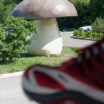 Fiera del Fungo Albareto 09-09-2012 (363)