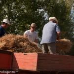 Fiera del Fungo Albareto 09-09-2012 (370) Antica trebbiatura