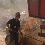 Fiera del Fungo Albareto 09-09-2012 (375) Antica trebbiatura