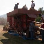 Fiera del Fungo Albareto 09-09-2012 (383) Antica trebbiatura