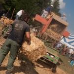 Fiera del Fungo Albareto 09-09-2012 (388) Antica trebbiatura