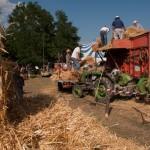Fiera del Fungo Albareto 09-09-2012 (390) Antica trebbiatura