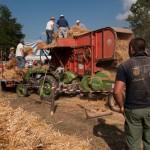 Fiera del Fungo Albareto 09-09-2012 (391) Antica trebbiatura