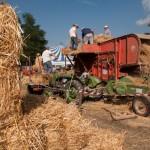 Fiera del Fungo Albareto 09-09-2012 (398) Antica trebbiatura