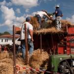 Fiera del Fungo Albareto 09-09-2012 (399) Antica trebbiatura