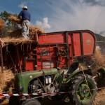 Fiera del Fungo Albareto 09-09-2012 (404) Antica trebbiatura
