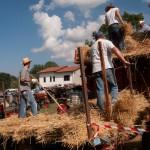 Fiera del Fungo Albareto 09-09-2012 (406) Antica trebbiatura