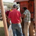Fiera del Fungo Albareto 09-09-2012 (418) Antica trebbiatura