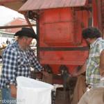 Fiera del Fungo Albareto 09-09-2012 (421) Antica trebbiatura