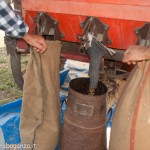 Fiera del Fungo Albareto 09-09-2012 (422) Antica trebbiatura