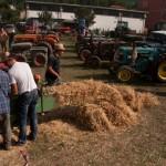 Fiera del Fungo Albareto 09-09-2012 (435) Antica trebbiatura