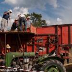 Fiera del Fungo Albareto 09-09-2012 (439) Antica trebbiatura