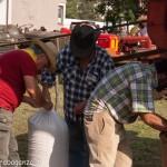 Fiera del Fungo Albareto 09-09-2012 (444) Antica trebbiatura
