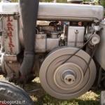 Fiera del Fungo Albareto 09-09-2012 (449) Antica trebbiatura