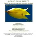 Locandina-corso-piante-asterbook.it - 2012