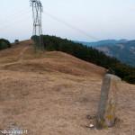 Monte Valoria Estate 2012 Berceto (203)
