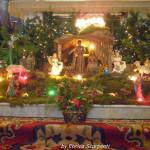 Natale 2012 Presepe Parrocchia Montegroppo Albareto (11)