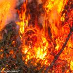 Bedonia Carnevale 2013 p3 (295) falò. fuoco