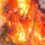 Bedonia Carnevale 2013 p3 (296) falò. fuoco