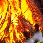 Bedonia Carnevale 2013 p3 (314) falò. fuoco