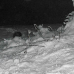 Istrice-Berceto-Val-Baganza-27-neve