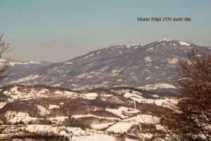 Panorama (14) Monte Pelpi