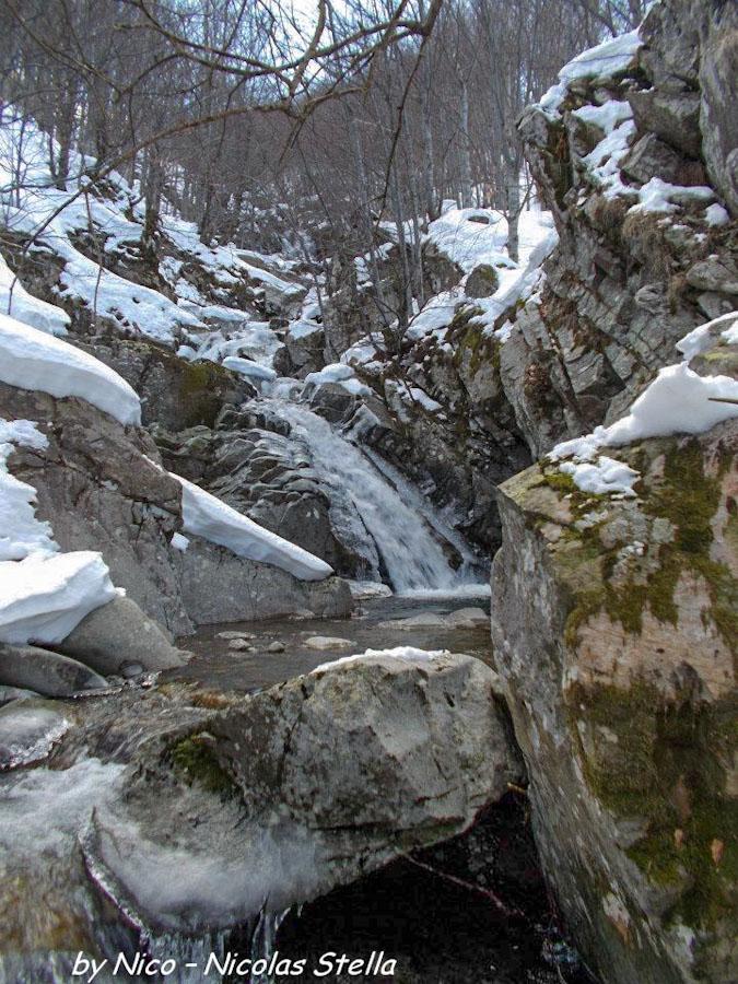Monte Gottero (12) Rio canale Vuşidu ghiaccio