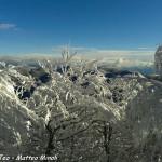 Monte Gottero neve 22-01-2013 (14)