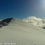 Monte Gottero neve 22-01-2013 (16) tracce lupo