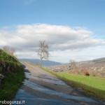 Primavera Albareto Val Gotra Taro 2013 (158)