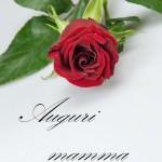 Biglietti auguri fiori rosa (17) mamma